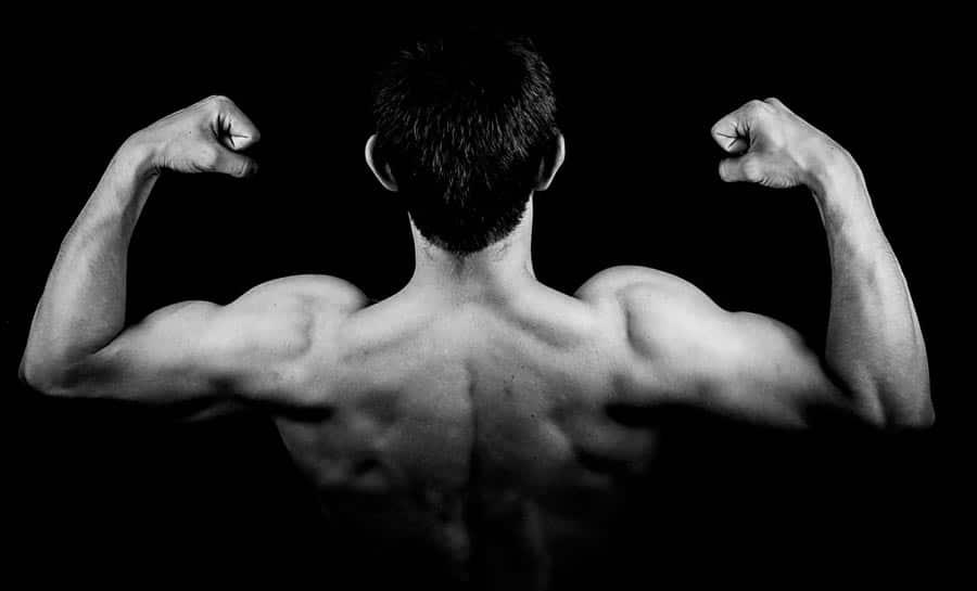 brazos-espalda-musculo